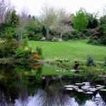 Gartenteich anlegen: die 5 größten Fehler beim Teichbau