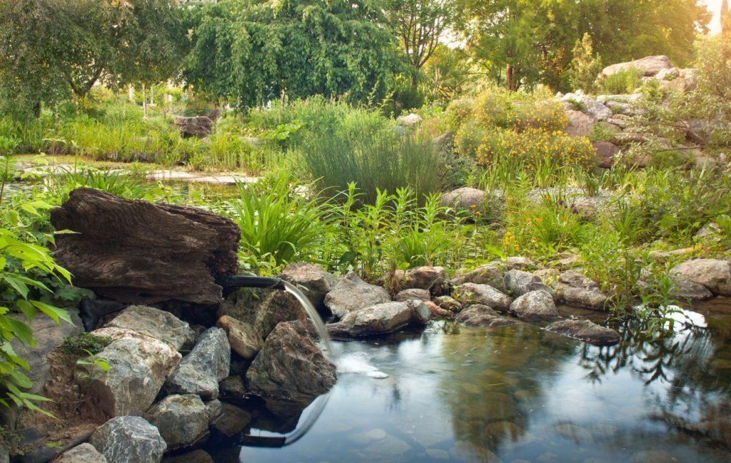 2. Frische Quelle mit Teich im Steingarten