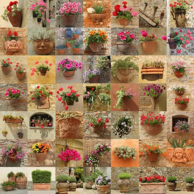 Farbenfroh komme mediterraner Wohnstil daher.  In viele Farben und Formen zeigen sich die Blüher des Südens. Fangen Sie sie ein.
