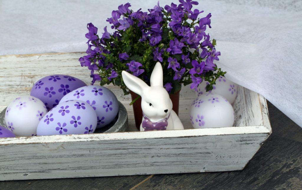 """""""Ostern bunt erleben"""" ist unser Titel für die 5. Deko-Idee. Lila ist klar die dominierende Farbe. Mit der Feder und einem Stempel haben wir die Lila Blumen auf die Eier getupft. Die Eier sind übrigens selbst ausgeblasen. Stammen noch aus unseren Ostervorbereitungen. Der Hase mit seiner weißen Farbe kontrastiert aufs Angenehmste mit dem Lila Bastel- und Machwerk ringsum. Das kleine weißliche, rechteckige Holzschälchen stammt aus dem Shop unseres Möbelhauses hier. Da gibt's noch mehr von diesem Krimskrams. Mühsam sind wir dem Eurograb entronnen und haben dieses Beutestück mitgebracht. (#5)"""