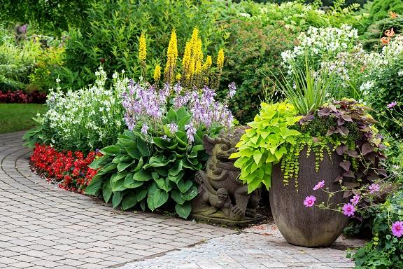 farbenfroher und wunderschöner Garten