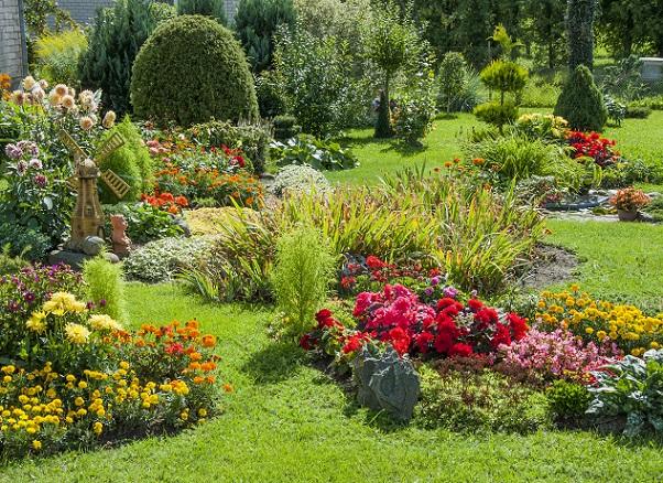 Zur richtigen Zeit, Blumen aussähen garantiert das Blühen zur richtigen Zeit