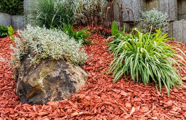 Steingarten mit roten Rindenmulch: Eine schöne Alternative, wenn man Garten möchte aber nicht soviel Zeit hat um ihn auch zu pflegen