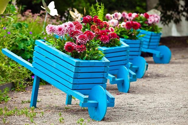 Um Blumen zu pflanzen braucht man nicht unbedingt einen Garten auch diese hübschen Schubkarren kann man gut verwenden