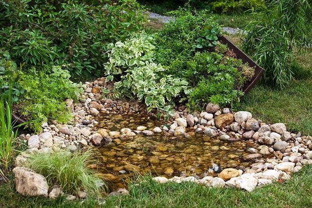 Ein kleiner Bereich mit einem Teich, ein paar Fische vielleicht, eine wunderbarer Platz um innezuhalten