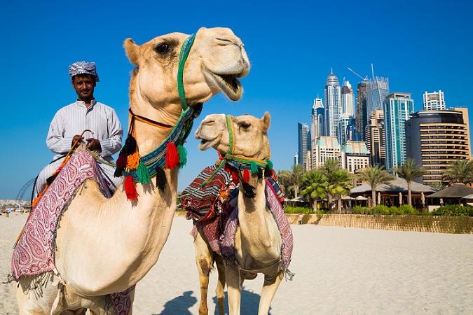 Einst gab es im Gebiet des heutigen Dubai nur die karge Wüste, heute gehört die Stadt zu den Metropolen der Welt, die man einmal im Leben erlebt haben sollte. (#01)
