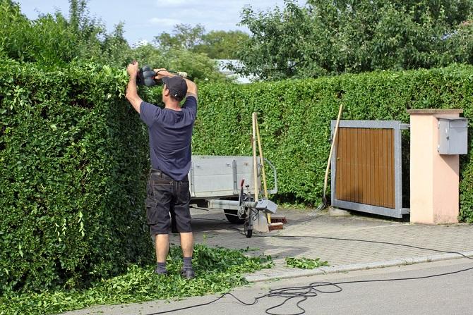 Für den Garten stellen Pflanzen verschiedener Art ebenfalls einen tollen Sichtschutz dar. Hohe Hecken ersetzen Sichtschutzzäune und wirken weniger beklemmend oder einengend. (#03)