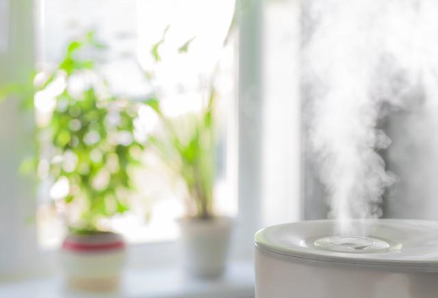 Um gut durchatmen zu können halte die Luftfeuchtigkeit idealerweise zwischen 40-60 Prozent. (#3)