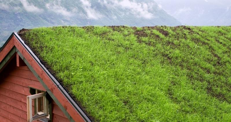 Bei den Carports und Garagen mit Begrünung steht das Umweltbewusstsein noch offensichtlicher im Vordergrund: Das grüne Dach setzt einen schönen Akzent im vorderen Bereich des Grundstücks. (#04)