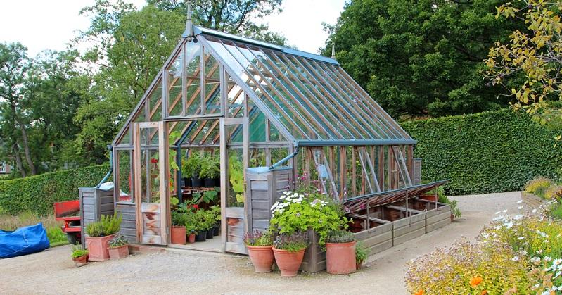 Im eigenen Gewächshaus lassen sich hervorragend Gemüse, Obst oder Kräuter anpflanzen. (#02)