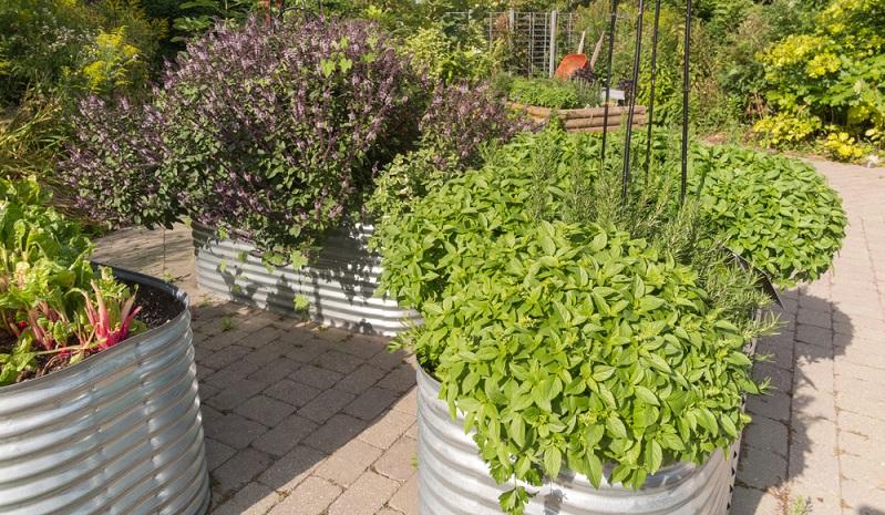 Die leichte Montage und die lange Lebensdauer des witterungsfesten Metalls überzeugen viele Gartenfreunde. (#01)