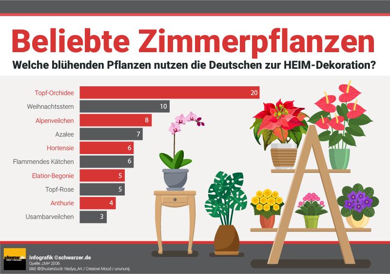 Wenn Sie sich gern mit Blumen und Pflanzen umgeben, sollten Sie die Symbolkraft derselben berücksichtigen und versuchen, Ihre Wohnung entsprechend einzurichten.