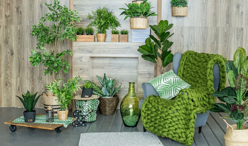 Wie bereits angesprochen wurde, sind Zimmerpflanzen aus keiner gemütlichen Wohnung wegzudenken. (#05)