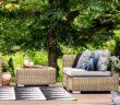 Schattenspender: Empfehlungen für Haus, Balkon und Garten