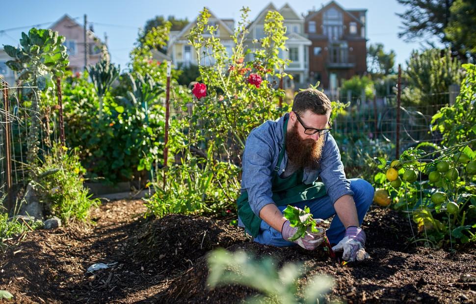 Den Vorgarten zu gestalten sehen viele nicht als die einzige Aufgabe an. Der Deutsche liebt seine Garten. Pflege, Ausgestalten des Gartens und das Erleben, dass aus der eigenen Arbeit Großes entsteht, gehören mit dazu. (#1)