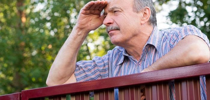 Mit Dem Richtigen Sichtschutz Zum Nachbar Die Neugier Austreiben