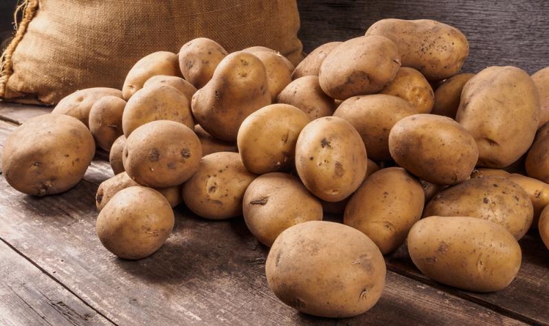 Neben der Backpulverfalle kann man auch eine natürliche Giftfalle erzeugen. Kartoffel- und Tomatenpflanzen enthalten ein für die Speisemotten natürliches Gift.