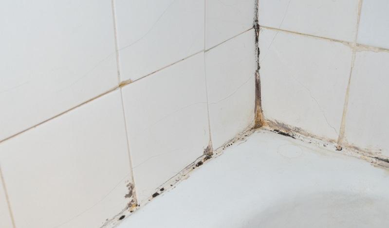 Fliesenfugen effektiv reinigen: So ein Horrorbad möchte keiner sehen und sich schon gar nicht darin aufhalten.(Fotolizenz-shutterstock bane.m)