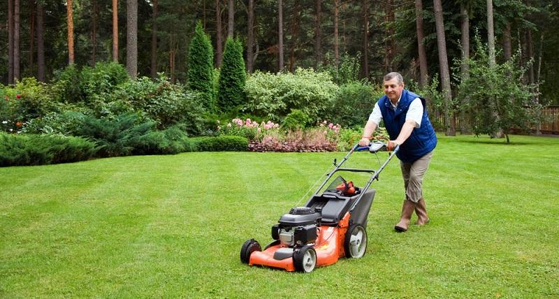 Selbst die Erwachsenen wollen manchmal ein Stück weit laufen und erkunden den Garten. Wohl dem Gartenbesitzer, der zuvor den Rasen gemäht hat!  ( Foto: Shutterstock-Dmitrijs Dmitrijevs)