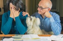 Zwangsversteigerung verhindern: So retten Sie Ihre Immobilie ( Foto: Shutterstock-DavideAngelini)