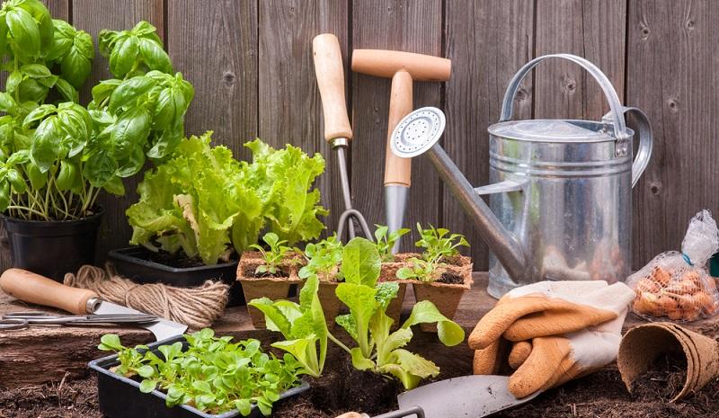 Nutzen Sie das Kubus Gartenhaus als Nutzgebäude. ( Foto: Shutterstock-Alexander Raths)