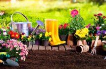 Gartengeräte: Bilder und Namen zuverlässiger Maschinen für den Profi-Garten ( Foto: Shutterstock-_Romolo Tavani )