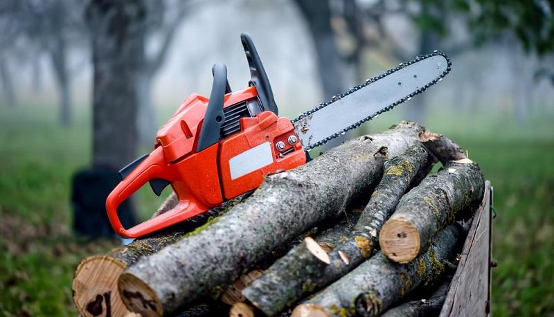 Die Motorsäge ist für alle unverzichtbar, die Bäume auf ihrem Grundstück haben oder einen Kamin besitzen.  ( Foto: Shutterstock- bogdanhoda )